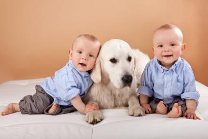 Newzitiv » Les bienfaits du chien à la maison
