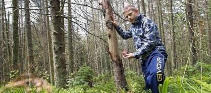 Un jeune slovaque sauve des arbres